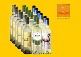 Iberisches Weissweinpaket